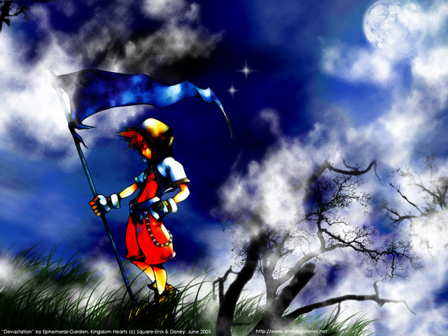 Kingdom Hearts 2 Anime Wallpaper #11