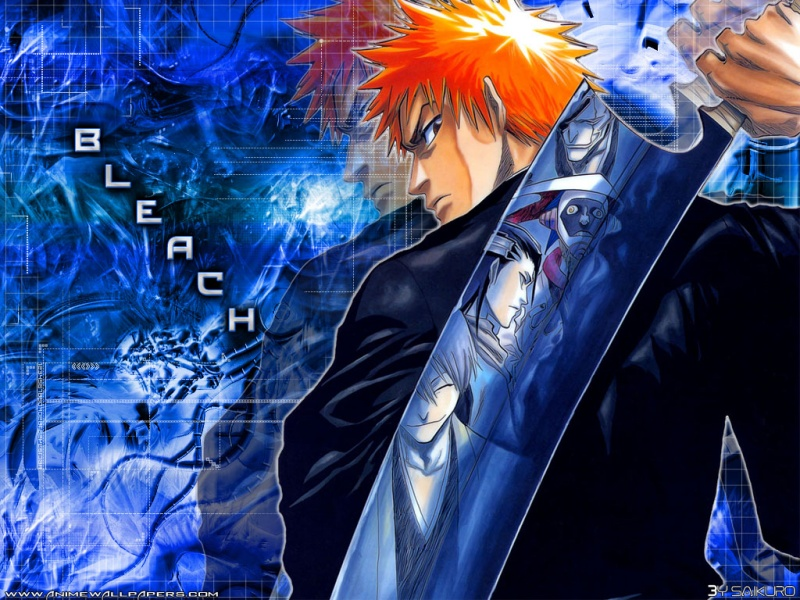 Bleach Anime Wallpaper # 11