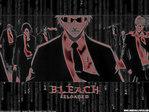 Bleach Anime Wallpaper # 18