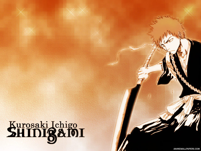 Bleach Anime Wallpaper #20
