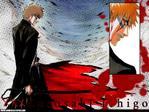 Bleach Anime Wallpaper # 21