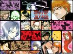 Bleach Anime Wallpaper # 23