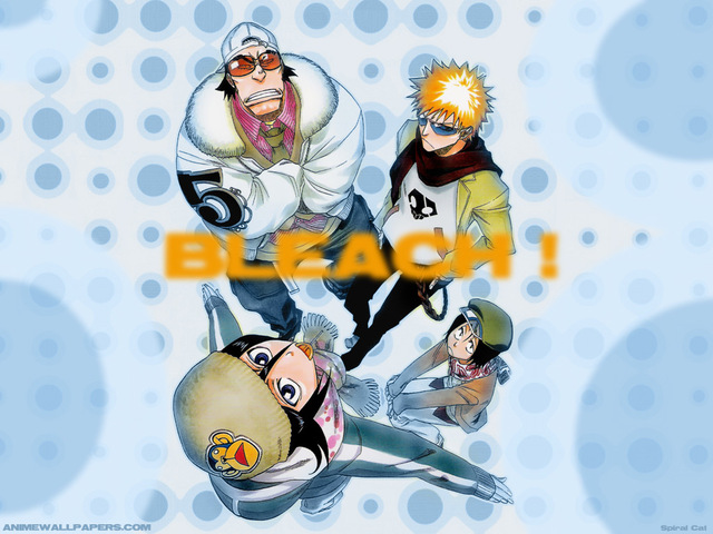 Bleach Anime Wallpaper #31