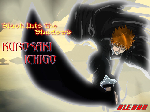 Bleach Anime Wallpaper #33