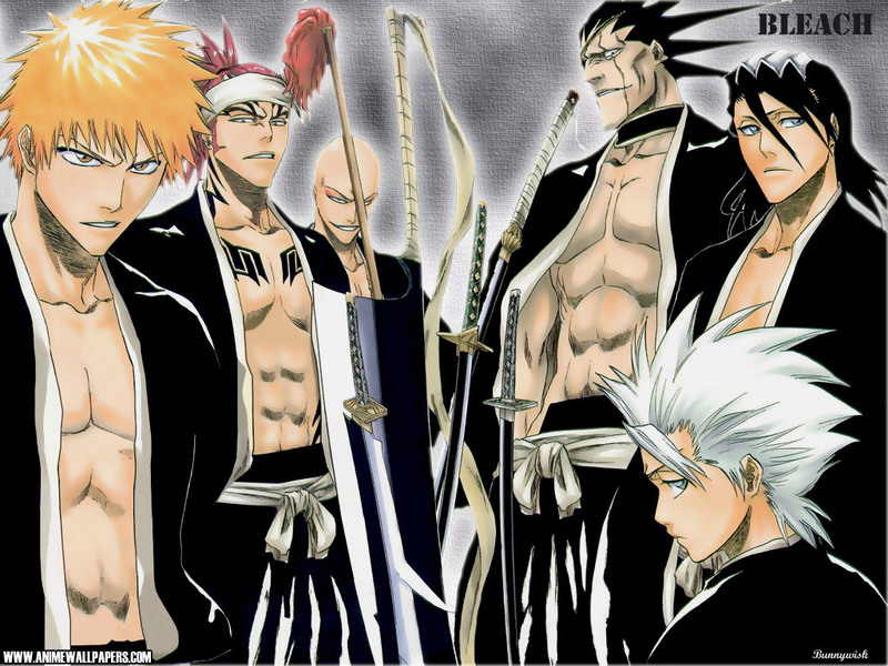 Bleach Anime Wallpaper # 36