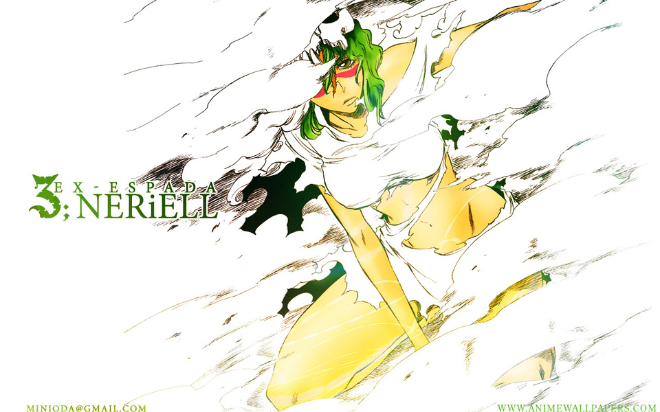 Bleach Anime Wallpaper # 45