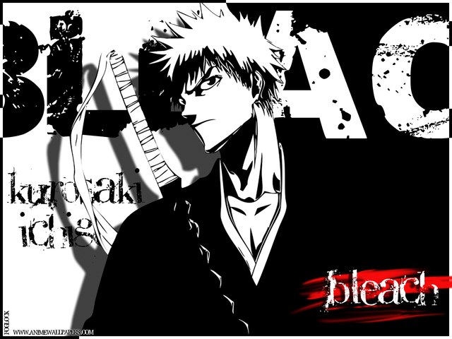 Bleach Anime Wallpaper #50