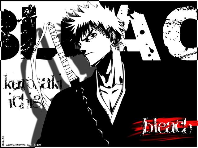 Bleach Anime Wallpaper #50