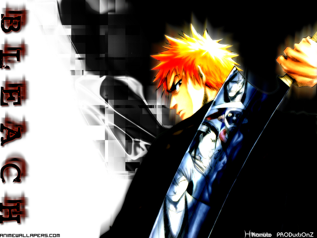 Bleach Anime Wallpaper #51