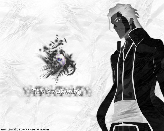 Bleach Anime Wallpaper #52
