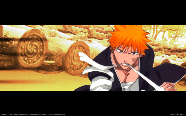 Bleach Anime Wallpaper #63