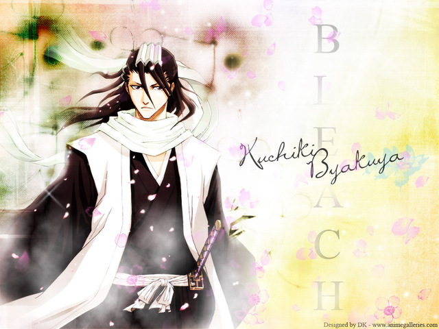 Bleach Anime Wallpaper #66