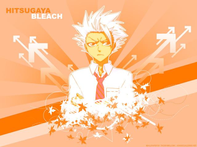 Bleach Anime Wallpaper #68