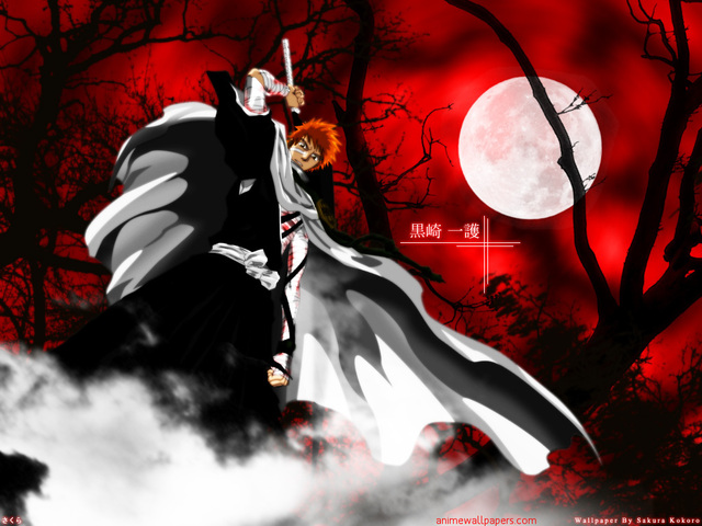 Bleach Anime Wallpaper #73