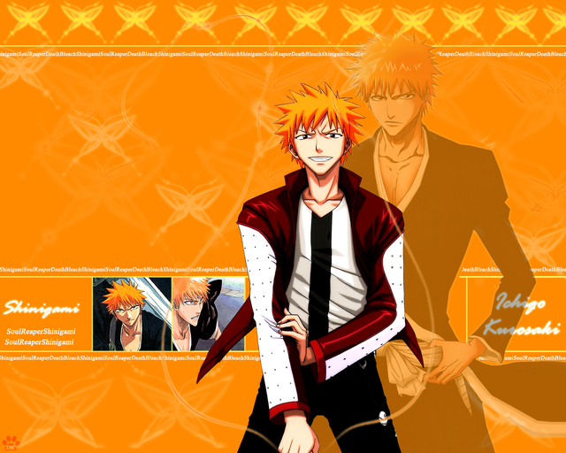 Bleach Anime Wallpaper #82