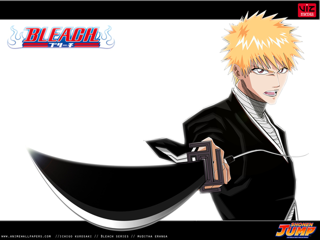 Bleach Anime Wallpaper #85