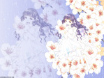 Card Captor Sakura Anime Wallpaper # 39
