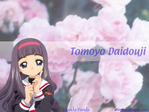 Card Captor Sakura Anime Wallpaper # 3