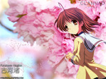 Clannad anime wallpaper at animewallpapers.com