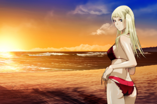 Claymore Anime Wallpaper #24