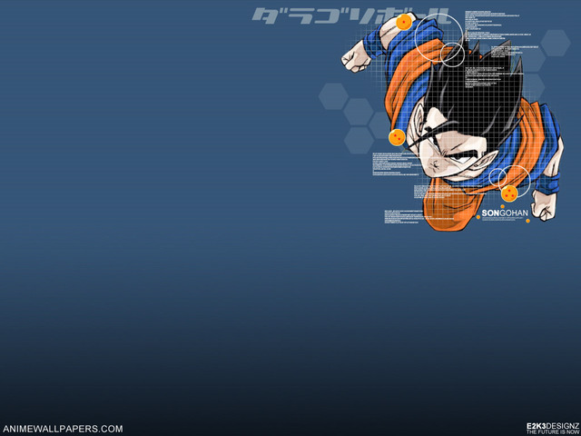Dragonball Z Anime Wallpaper #13