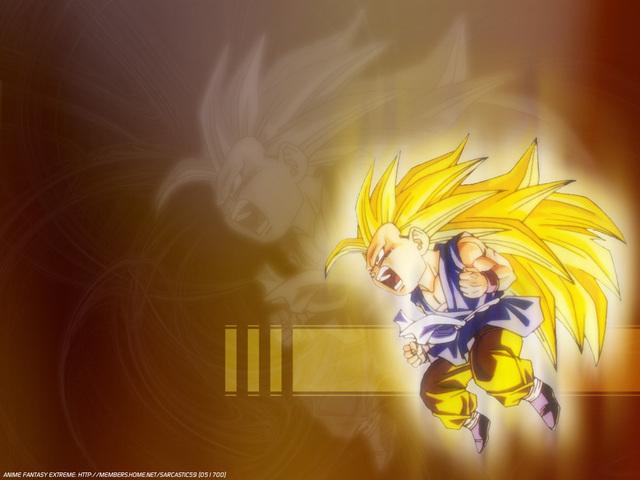 Dragonball Z Anime Wallpaper #22
