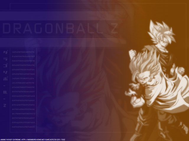 Dragonball Z Anime Wallpaper #23