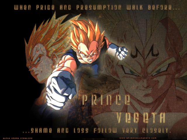 Dragonball Z Anime Wallpaper #26