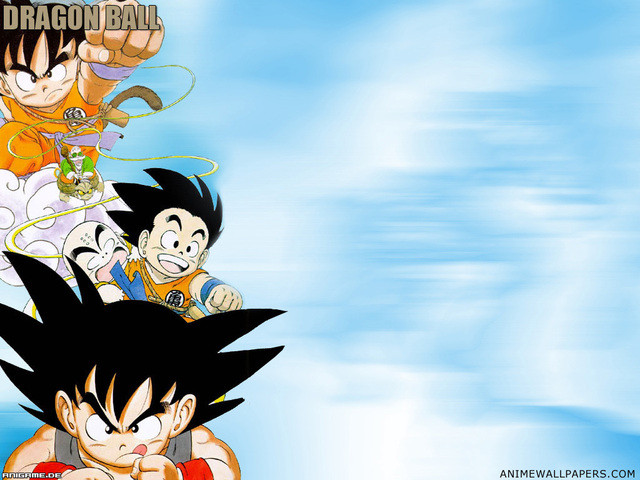 Dragonball Z Anime Wallpaper #28
