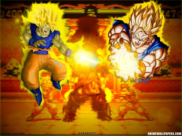 Dragonball Z Anime Wallpaper #32