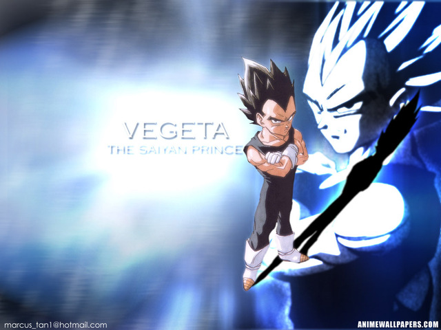 Dragonball Z Anime Wallpaper #33
