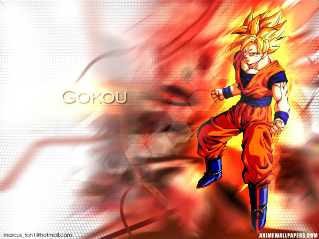 Dragonball Z Anime Wallpaper #34