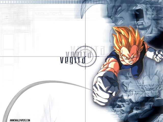 Dragonball Z Anime Wallpaper #3