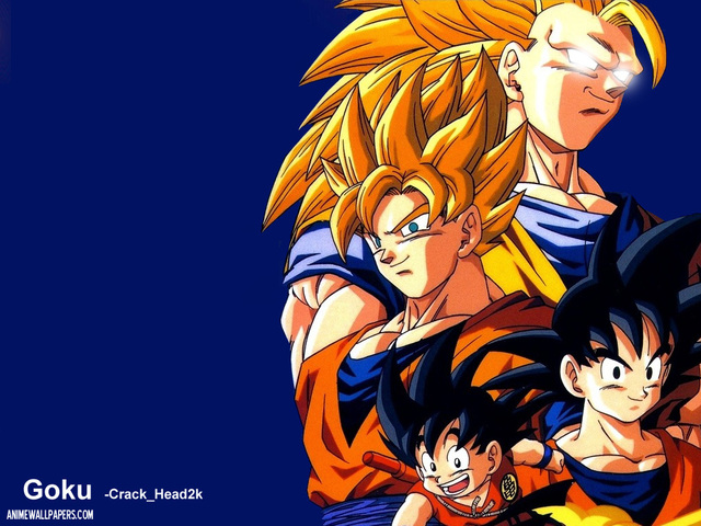 Dragonball Z Anime Wallpaper #40