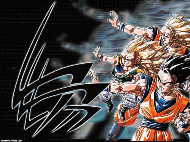 Dragonball Z Anime Wallpaper #47
