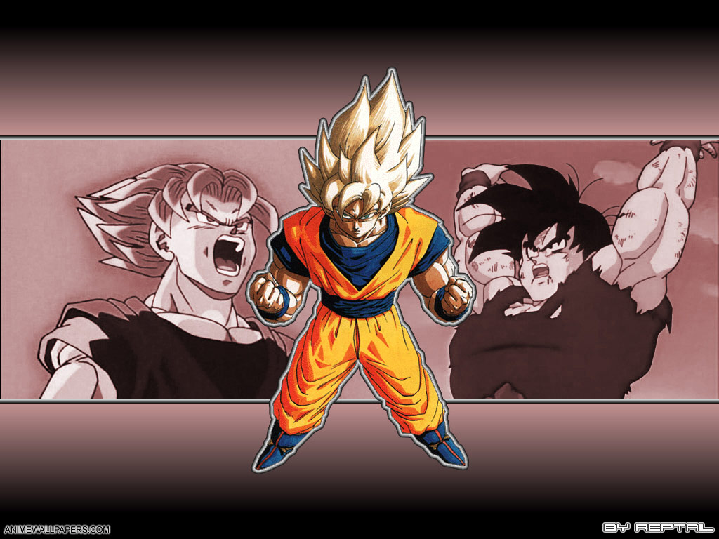 Dragonball Z Anime Wallpaper # 53