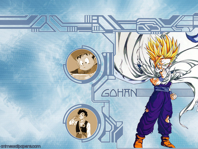 Dragonball Z Anime Wallpaper #63