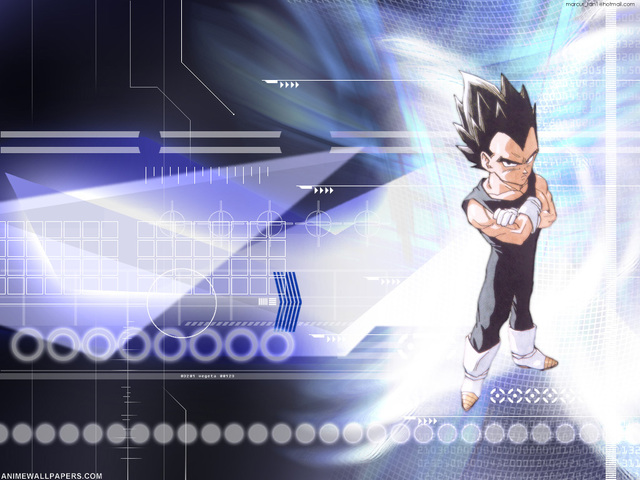 Dragonball Z Anime Wallpaper #67