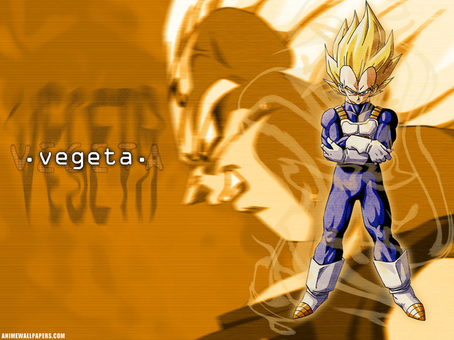Dragonball Z Anime Wallpaper #7