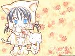 Full Moon wo Sagashite anime wallpaper at animewallpapers.com