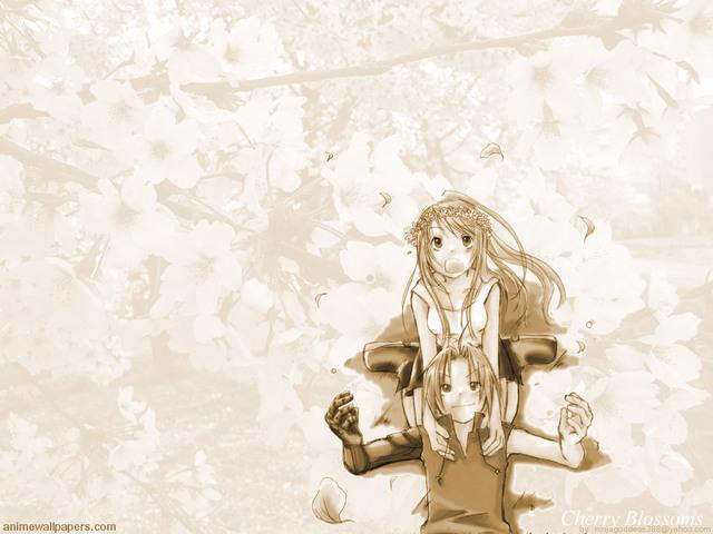 Fullmetal Alchemist Anime Wallpaper #10