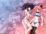 Girls Bravo Anime Wallpaper # 1