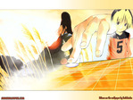 Hikaru no Go Anime Wallpaper # 12