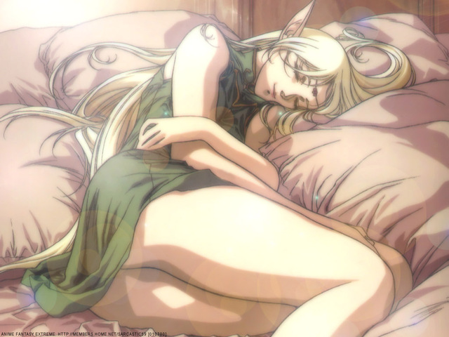 Record of Lodoss War Anime Wallpaper #6