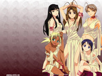 Love Hina Anime Wallpaper # 39