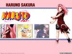 Naruto Anime Wallpaper # 36