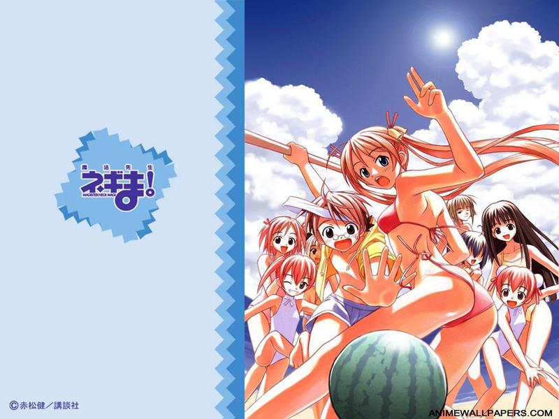 Negima Anime Wallpaper # 10