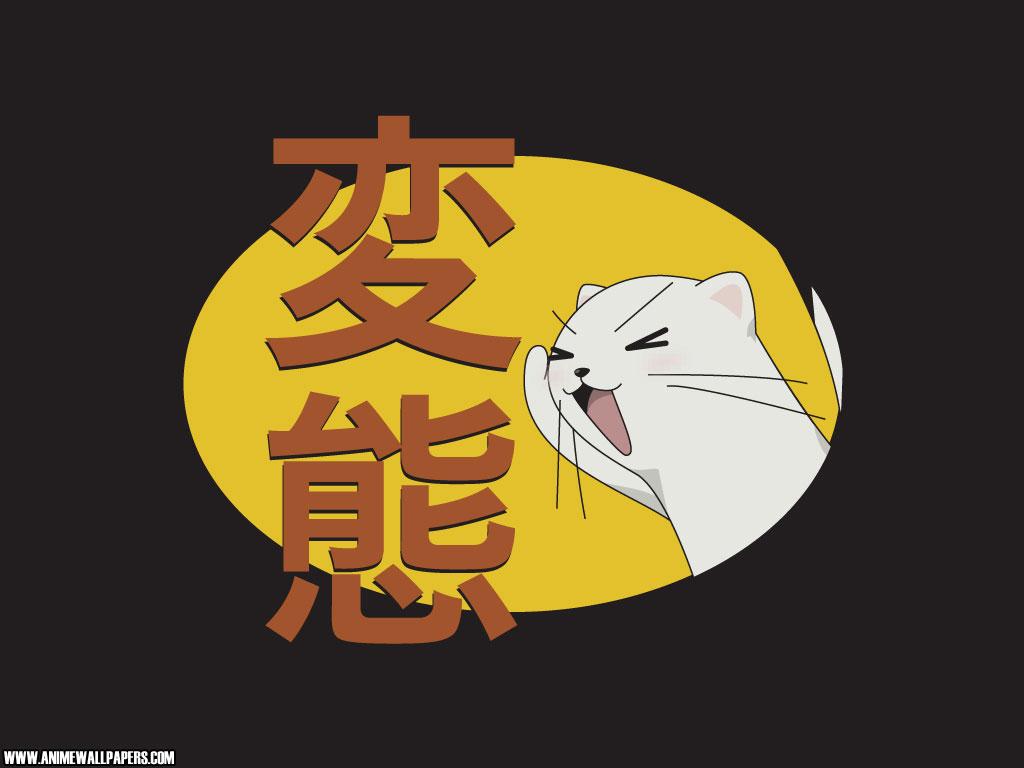 Negima Anime Wallpaper # 13