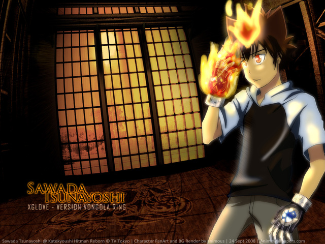 Katekyo Hitman Reborn! Anime Wallpaper #2