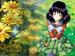 Sailor Moon Anime Wallpaper # 16